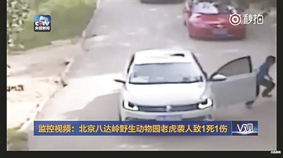 Woman mauled to death by tiger in Beijing animal park
