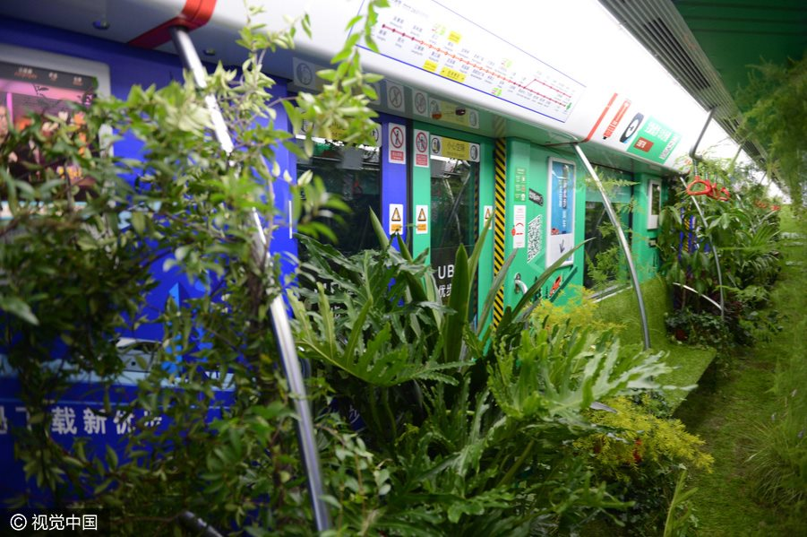 'Forest subway' in Hangzhou