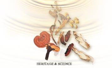 Overview of Chinese Herbal Medicine